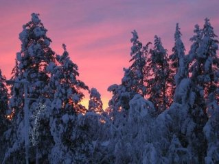 Diep winter in Lapland